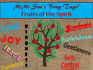 Brag Tags FOTS AD PNG